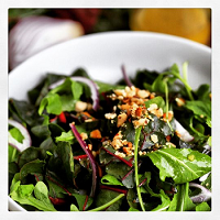Toasted Walnuts and Vinaigrette Top Salad of Chard and Arugula